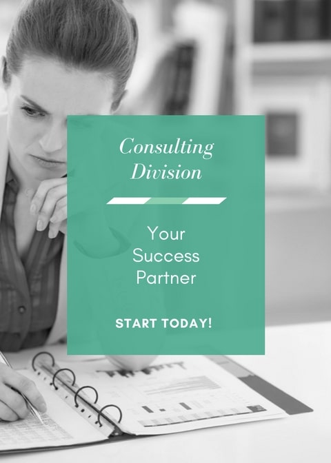 Business Consulting Savannah GA