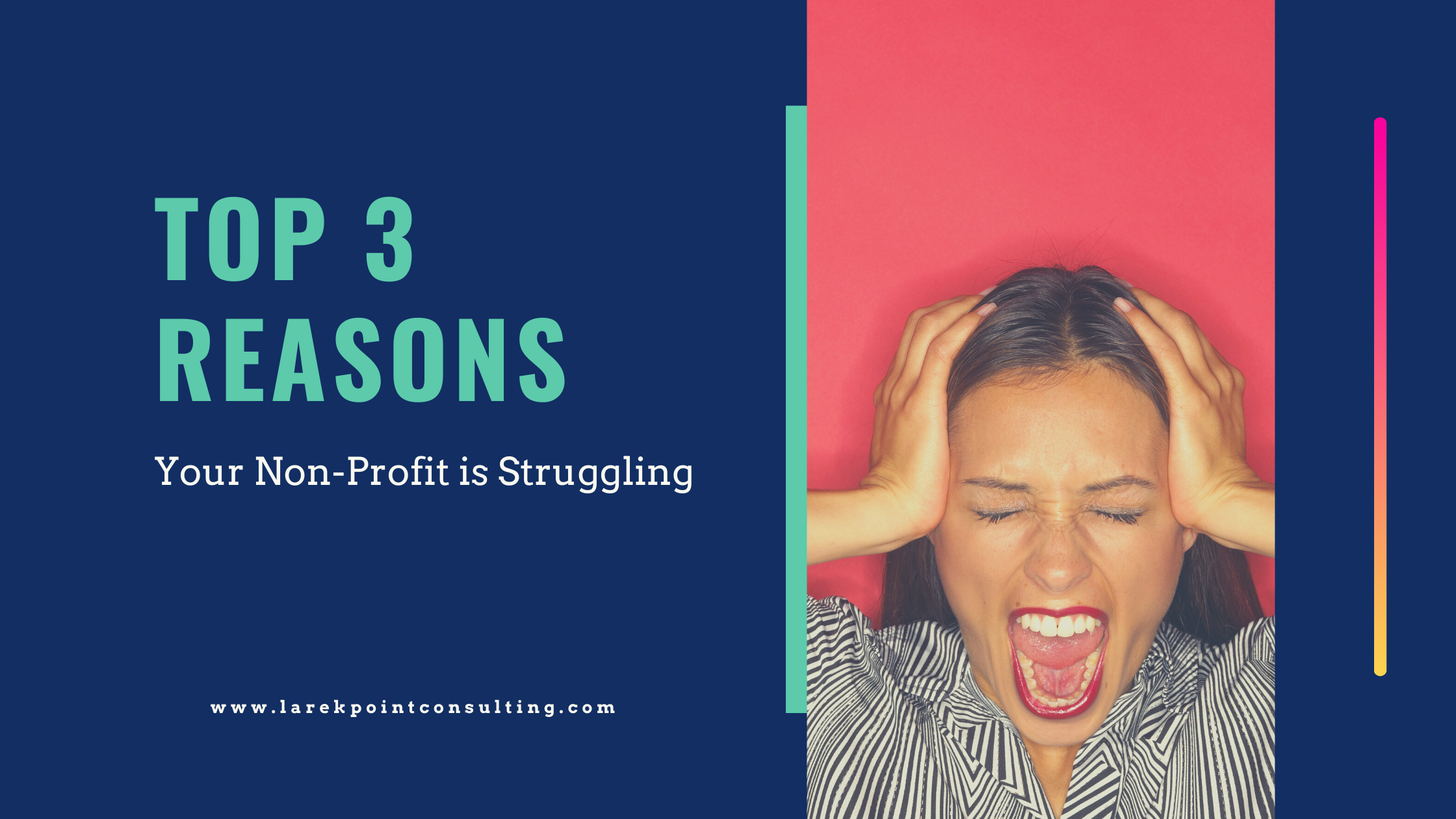 top 3 reasons a non-profit struggles - larek point consulting