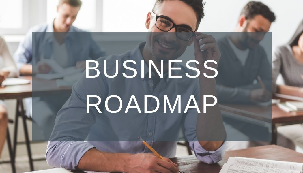 larek point consulting business roadmap