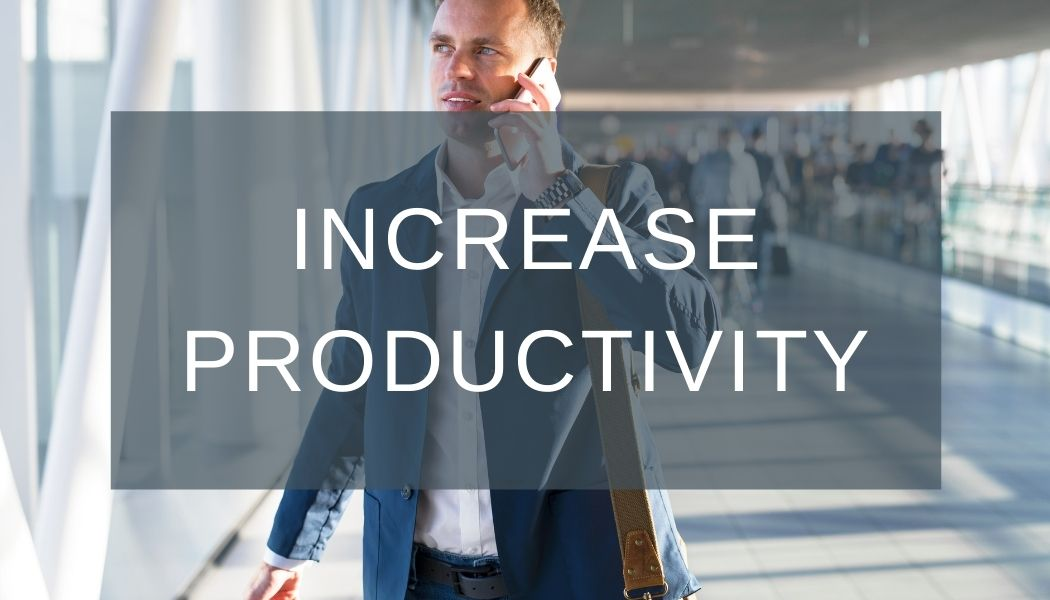 larek point consulting increase productivity